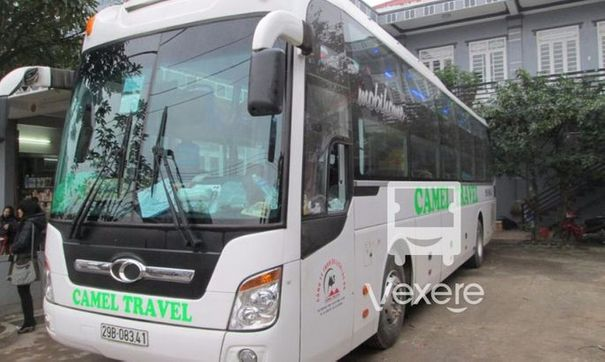 Camel Travel bus - VeXeRe.com